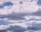 Cloud Computing Powers Brain Cancer Research