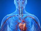 Cancer Treatment Breaks Hearts