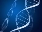 Genetics Could Explain Racial Disparity in Colon Cancer