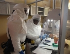 Aid Group Calls for More Help in Ebola Fight