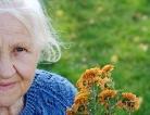 Linking Estrogen, Diabetes and Dementia