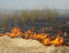 Fires Flare Up Asthma and COPD Attacks