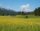 Greer Announces FDA Approval of Oralair for Grass Pollen Allergy