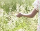 Pollen Counts Soaring in Europe