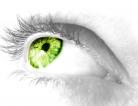 Eye Disease May Give Clues of Brain Decline