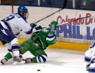 Blood Markers May Guide Return to Play After Concussion