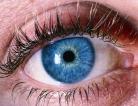 Strange Link Between Eye Disease and Bladder Cancer