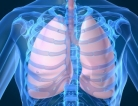 Supplements Have No Impact After Lung Injury