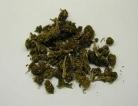 20 Years of Marijuana Research Summarized in New Report