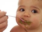 Exploring Parent Education to Reduce Obesity