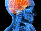 Teen Habits and Brain Health