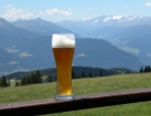 Beer & Health? Don't Go Together...Yet