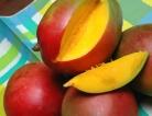 Ancient Fruit, Future Superfood?