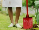 TBI and Pesticide Increase Risk of Parkinson's