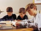 Autism and Academic Achievement
