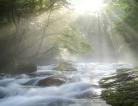 Sunlight May Lower Stroke Risk