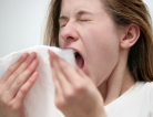 Do Fruits Stop the Sneezing?
